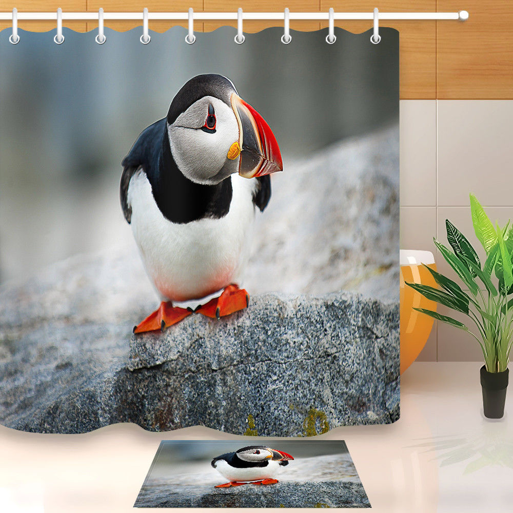 Shower Curtains Funny Penguin Cute