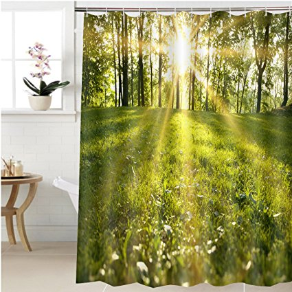 Shower Curtains Bed Bath And Beyond Sunlight Forest Green
